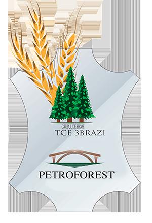 Petroforest logo mic1